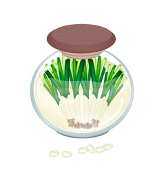 Delicious pickled fresh leek in a jar vector