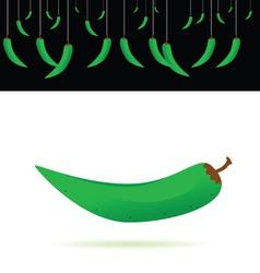Green chillies vector