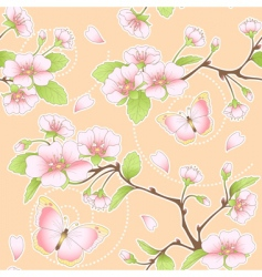 Sakura and butterflies pattern vector