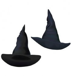 Witches hats vector