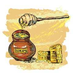Honey jar with honeycombs vector