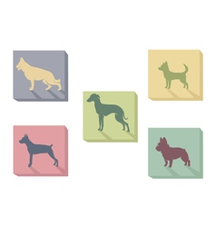 Icon of dogs vector