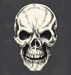 Hand drawn skull vector