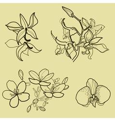 New flower set vector