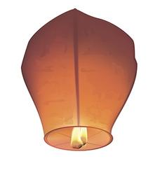 Chinese wish lanterns vector