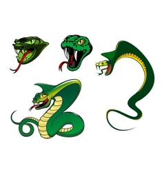 Cartoon angry snake characters vector