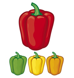 Sweet bell peppers vector