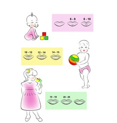 Children teething scheme vector
