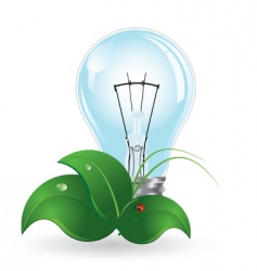 Light bulb and insect vector