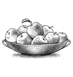 Engraved apples vector