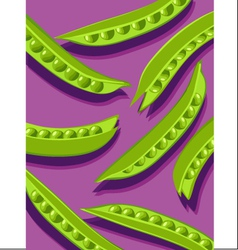 Peas on purple vector