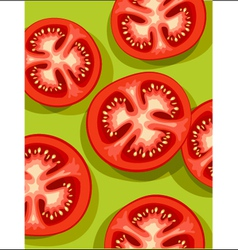 Tomatoes on green vector