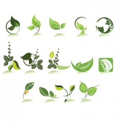 Herbal icons vector