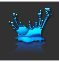 Splashing water with reflection vector