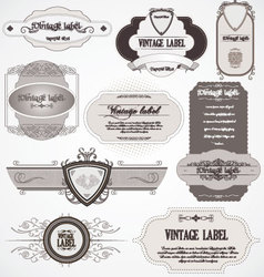 Calligraphic labels vector