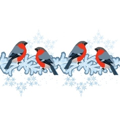 Red bullfinches on winter branches vector