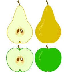 Apple and pear vector