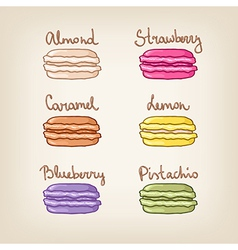 Assortment of colorful macaroons with different vector
