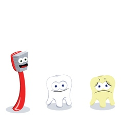 Toothbrush and teeth vector