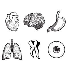 Random body parts vector