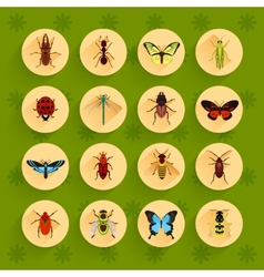 Insects flat icons set vector