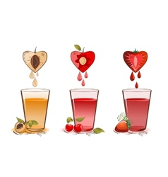 Fruits juice vector