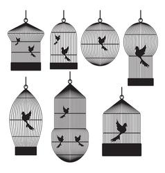 Birds in cages vector