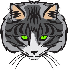 Cat muzzle vector