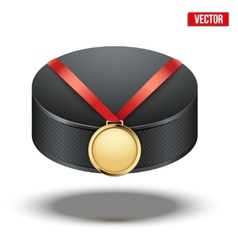 Sport gold medal with ribbon for winning ice vector
