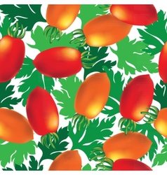 Cherry tomato seamless background vector