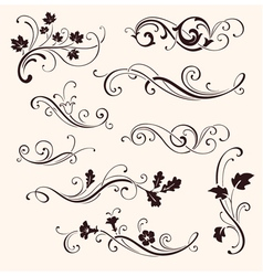 Set of calligraphic floral elements vector