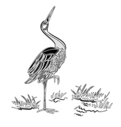White stork water bird vintage engraving vector