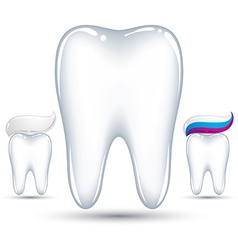 Tooth with toothpaste vector