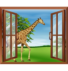 A giraffe outside the window vector
