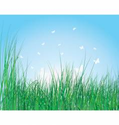 Lush grass background vector