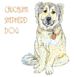 Caucasian shepherd dog breed vector
