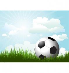 Football in grass vector