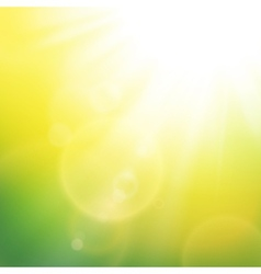 Abstract background with summer sun and lens vector