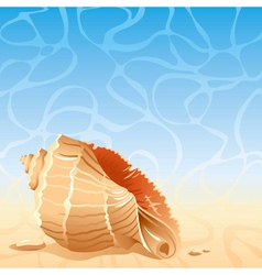 Sea background with shell vector