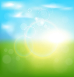 Abstract spring background with sunrise and grass vector