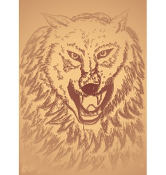Abstract wolf sketch3 vector
