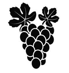 Grapes vector