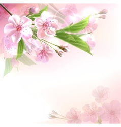 Blossoming tree branch with pink flowers vector