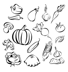 Vegetables icon set sketch vector