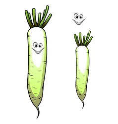 Fresh whole parsnip with a sweet smile vector