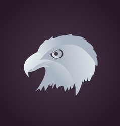 Hawk head vector