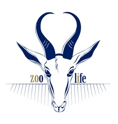 Antelope deer head icon vector