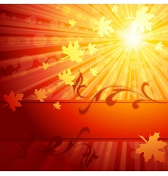 Elegant autumn banner vector