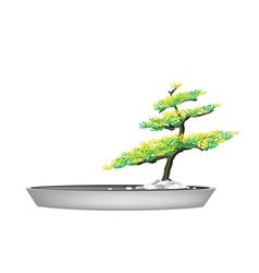 A beautiful fir tree in flower pots vector