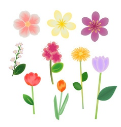 Flowers collection vector